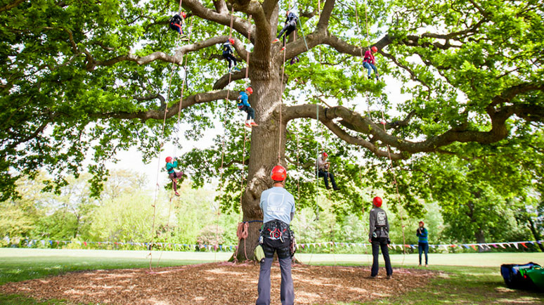 Tree climbers stood next to a tree in Appley, Ryde, Isle of Wight